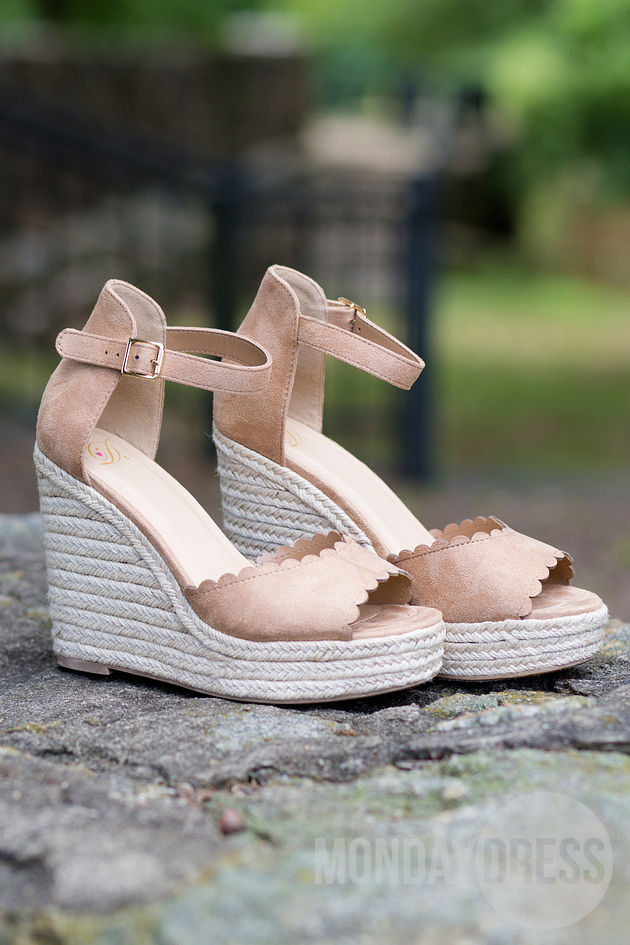 Tropical State of Mind Wedges